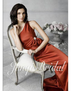Formal Evening Dress/Party Gown(Pa1014)