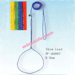 Pet Leads (2)