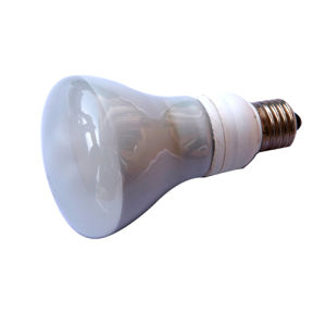 Reflector Energy Saving Lamp (WH REFL-01)