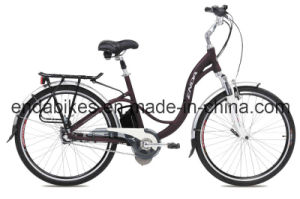 Electric Bicycle/Bike (TDF26S004)