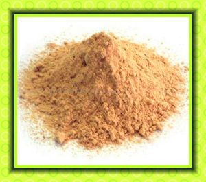 China High Quality Animal Feed Additive Lysine pictures & photos