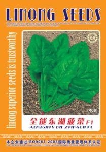 Quan Neng Dong Hu Spinach Seeds (409)