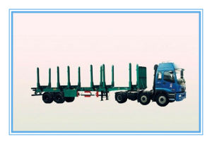 13m 2 Axles Timber / Wood Transport Semi Trailer (SH9320T) pictures & photos