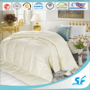 Soild Color Factory Microfiber 200GSM Quilt for Sale pictures & photos