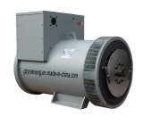 Marathon Alternator (8~350 KW)