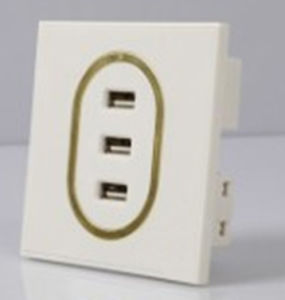 for iPhone USB Wall Charger, for iPad USB Wall Socket Charger pictures & photos