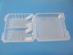 Food Blister Packaging (5)