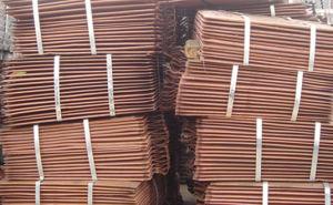 Good Sales Pure Copper Cathode 99.9%