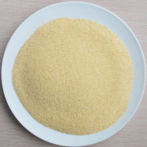 New Crop High Quality Dehydrated Garlic Granule pictures & photos