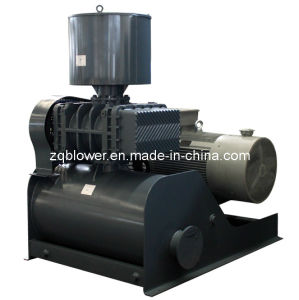 High Speed&Low Noise Tri-Lobe Roots Blower (ZG-50) pictures & photos