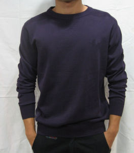 Men′s Sweater