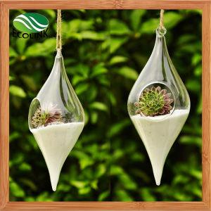 Olive Shape Transparent Glass Vase pictures & photos