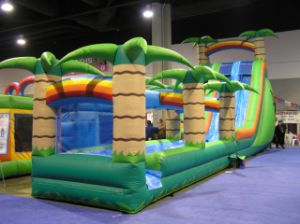 Inflatable Coco Slide