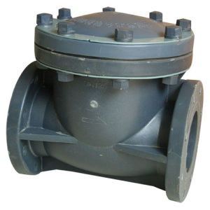 Swing Check Valve (Industry Plastic valves) pictures & photos