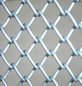 Galvanized Chain Link Fence (ECLF-01) pictures & photos