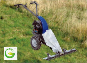 Gasoline Lawn Mower (QFG90) pictures & photos