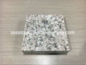 Chinese Big Granite Sheets with Thickness 2cm and 3cm pictures & photos