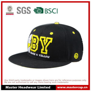 Black Snapback Hat with 3D Embroider Logo pictures & photos
