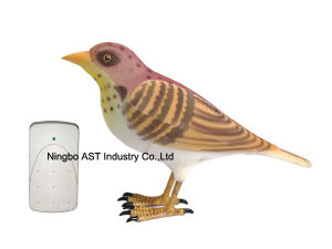 Bird Wireless Musical Doorbell, Digital Doorbell pictures & photos
