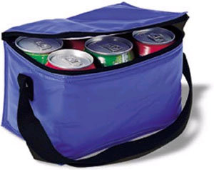 6 Cans/Insulated/Bottle/Lunch/Picnic/Shoulder/Nylon/Cooler Bag (MS3067) pictures & photos