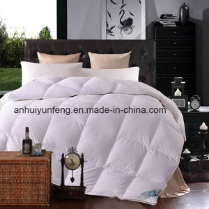 High Quality Goose Down for Home and Hotel for Wholesales pictures & photos