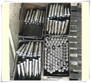 Zp Tablet Press Punch Die Set, Pill Punch Press Die Set pictures & photos