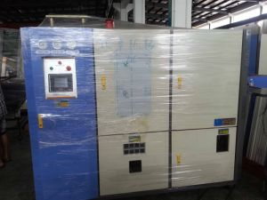 BM-100 10 Cavity Fully Automatic Linear Blow Molding Machine pictures & photos