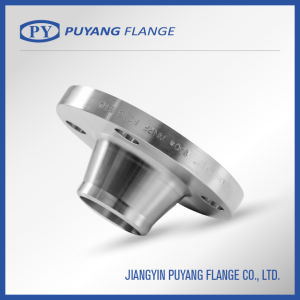DIN Standard Stainless Steel Weld Neck Flange (PY00104) pictures & photos