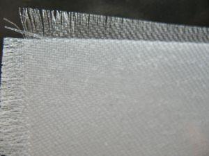 Polyester PE Filter Cloth for Waste Water Treatment pictures & photos