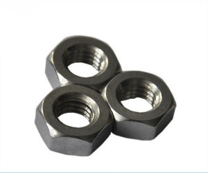 Ss Heavy Hex Nut with Stainless Steel pictures & photos