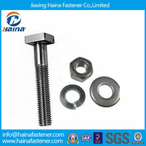 Carbon Steel/Stainless Steel/Square T Head Bolt with Hex Nut&Washer pictures & photos