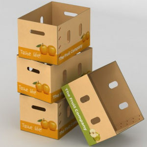 Waxed Corrugated Carton with Custom Print Logo or Mark pictures & photos