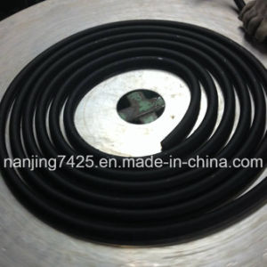Z-12*19-1m1 Rubber Hose for Customized pictures & photos