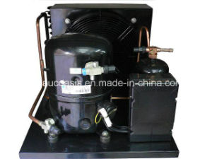 France Brand Tecumseh Condensing Units for Cold Storage pictures & photos