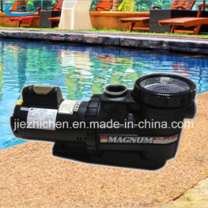 Commercial Plastic Pump Swimming Pool Water Pump with Hair and Lint Strainer