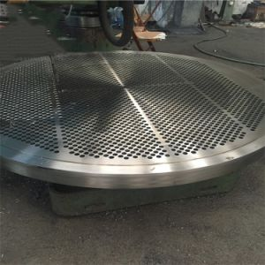 ASME Forged Stainless Steel Round Tube Sheet Flange pictures & photos