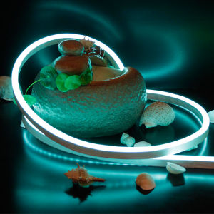 Ce Certified LED Neon Rope Light High Quality pictures & photos