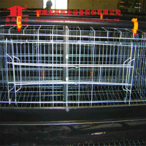 3 Tiers 108 Birds Automatic Poultry Broiler Cage for Chicken House pictures & photos