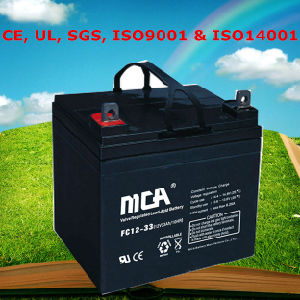 36V Deep Cycle Battery Motive Battery 33ah pictures & photos