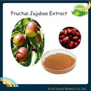 Red Date Extract, Fructus Jujubae Extract pictures & photos