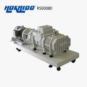 Multi - Crystal Furnace Used Dry Screw Vacuum Pump (RSE80)