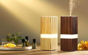 Ultrasonic Atomizer with Lights /Ultrasonic Humidifier with Mood Light /Ultrasonic Humidifier Atomizer pictures & photos