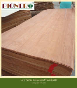 Rotary and Slicing Cut Timber Veneer with High Quality pictures & photos