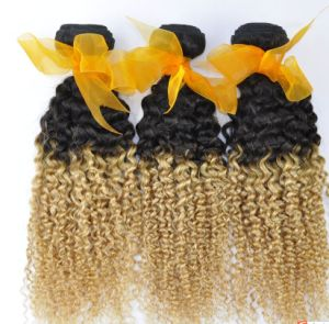 New Products Hight Quality Brazilian Curly Ombre Hair pictures & photos
