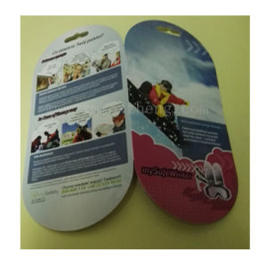 Color Brochure, Instruction, Booklet pictures & photos
