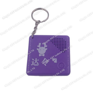 Musical Keychain, Recordable Keychains, Voice Recorder Keychain pictures & photos