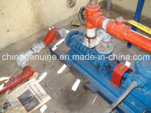 LPG Multistage Pump pictures & photos