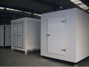 Fish Deep Freezer with Insulation pictures & photos
