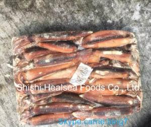 Wholesale Illex Squid, Argentine Squid pictures & photos