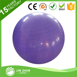 Fitness Ball Sport Equipment Exercise Yoga Ball pictures & photos